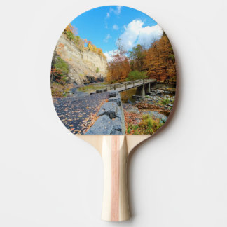 Taughannock Falls State Park Ping Pong Paddle