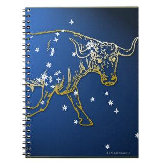 Taurus 2 note books