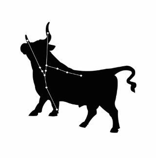 Taurus Constellation/Zodiac Photo Sculpture