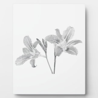 Tawny Day Lilly Digital Drawing Plaque