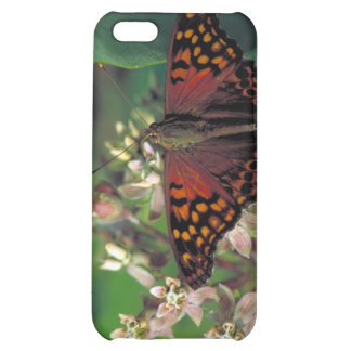 Tawny Emperor Butterfly on Common Milkweed iPhone 5C Cases