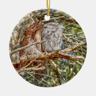 TAWNY FROGMOUTHS QUEENSLAND AUSTRALIA ART EFFECTS ROUND CERAMIC DECORATION