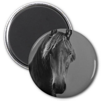 Tawny horse 6 cm round magnet