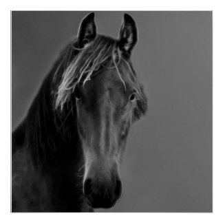 Tawny horse poster