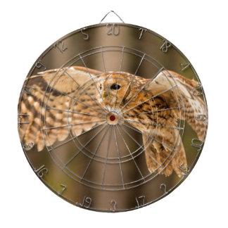 Tawny Owl in flight. Dartboard