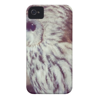 Tawny Owl Painting Case-Mate iPhone 4 Cases