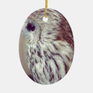 Tawny Owl Painting Ceramic Oval Decoration