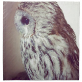 Tawny Owl Painting Napkin