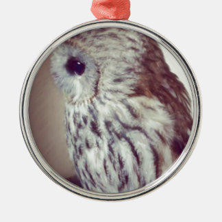 Tawny Owl Painting Silver-Colored Round Decoration