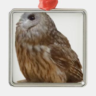 Tawny Owl pattern Christmas Ornament