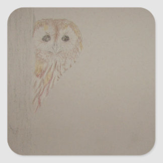 Tawny Owl Peek-a-boo Square Sticker