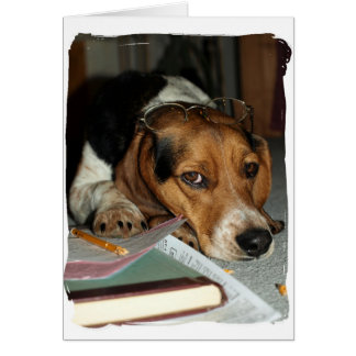 Tax Time - Beagle dog Greeting Card