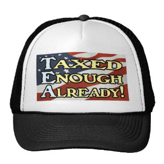 Taxed Enough Already! Mesh Hat