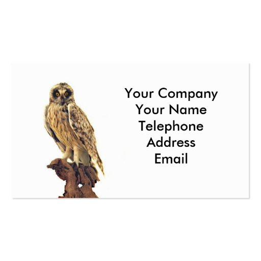 Collections of taxidermy business cards taxidermy of an owl business card templates colourmoves