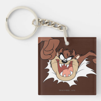 TAZ™ Bursting Through Page Key Ring