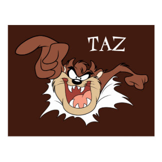TAZ™ Bursting Through Page Postcard