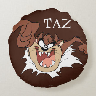TAZ™ Bursting Through Page Round Cushion