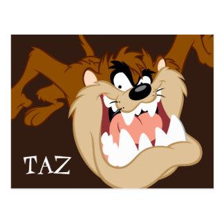 TAZ™ Evil Grin Postcard