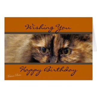 Taz HappyBirthday-customize Card