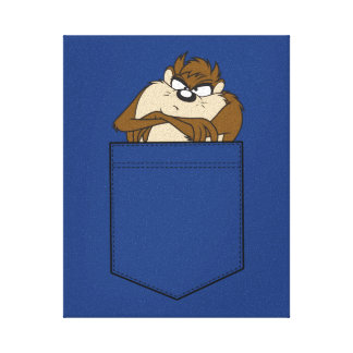 TAZ™ In A Pocket Canvas Print
