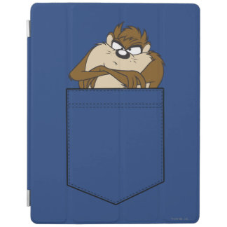 TAZ™ In A Pocket iPad Cover