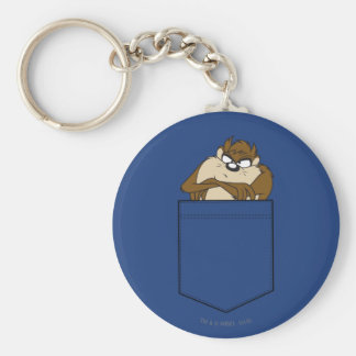 TAZ™ In A Pocket Key Ring