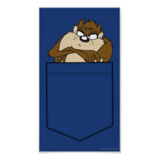 TAZ™ In A Pocket Poster