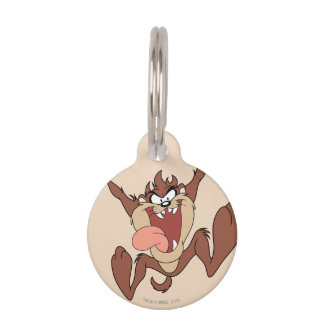 TAZ™ Leaping Pet ID Tag