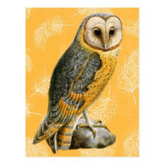 TCWC - Barn Owl Vintage Postcard