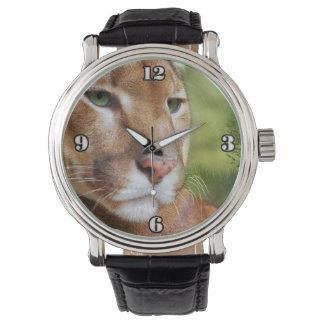TCWC - Puma Mountain Lion Art Watch