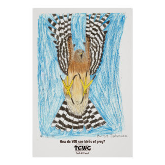 TCWC | Raptor in Flight | Youth Art Project Poster