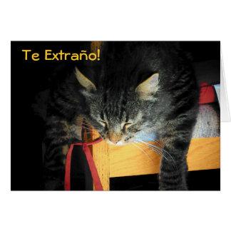 TE EXTRAÑO!  GATO GREETING CARD