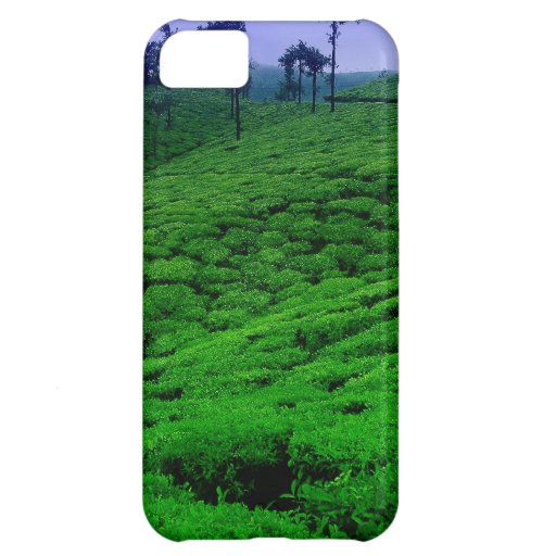 Tea plantation cover for iPhone 5C