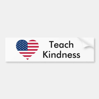 Teach Kindness United States Bumper Sticker
