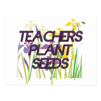 TEACHER PLANT SEEDS POSTCARD