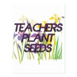 TEACHER PLANT SEEDS POSTCARDS