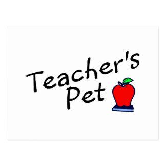 Teachers Pet Apple Postcard