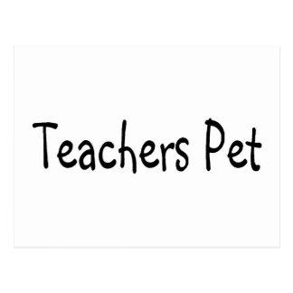 Teachers Pet Postcard