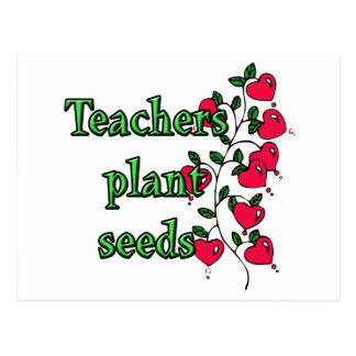 TEACHERS PLANT SEEDS POSTCARD