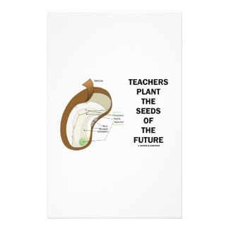 Teachers Plant The Seeds Of The Future Bean Seed Customized Stationery