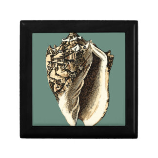Teal Conch Shell Gift Box
