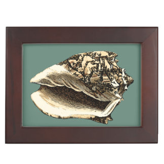 Teal Conch Shell Memory Box