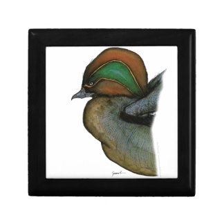 teal duck, tony fernandes small square gift box