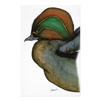 teal duck, tony fernandes stationery