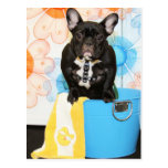 Teal - French Bulldog -1 Postcard