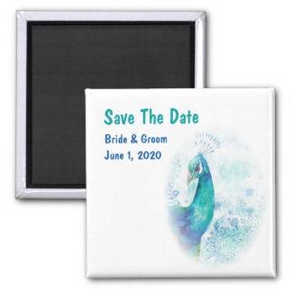 Teal Peacock Watercolor Save The Date Square Magnet