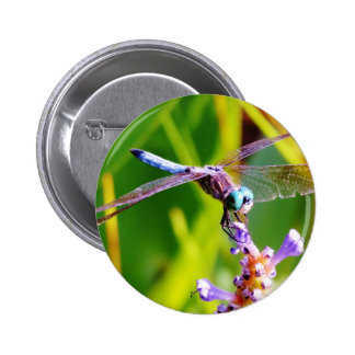 Teal & purple Dragonfly 6 Cm Round Badge