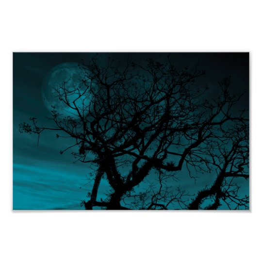 Teal Sky and Bare branches Poster