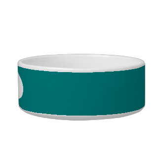 Teal Solid Color Cat Food Bowl