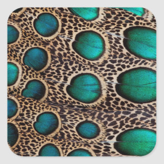 Teal Spotted pheasant feather Square Sticker